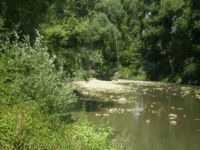 ponte_appiano