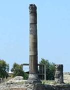colonna--140x180