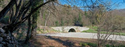 ponte scutonico