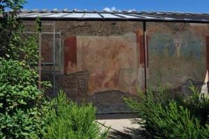 COD 177 pompei adone ferito