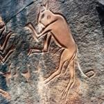 08-museo-castiglioni-pagine-pietra-graffiti-fauna-selvaggia