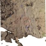 Immagine 9 - serie impronte