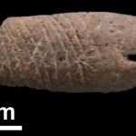 Press Monile mesolitico a forma di pesce dal sito archeologico