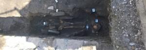 3758936_0812_scheletri
