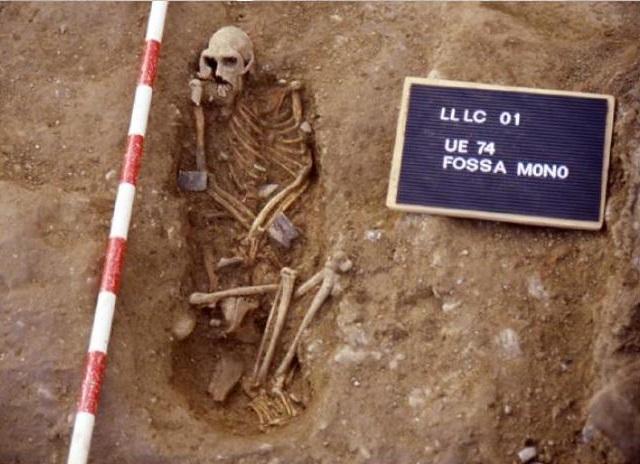 macaque-burial