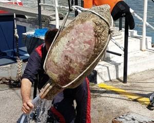 Recuperata in mare a Napoli anfora del I secolo dopo Cristo